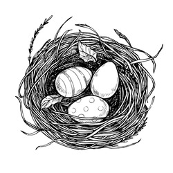 Hand drawn vector illustration - nest with spring eggs. Happy Easter! Sketch