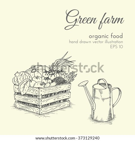 hand drawn vector illustration of organic products. sketch farmer harvest vegetables and watering can. healthy food