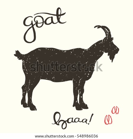 Hand drawn vector illustration of the goat with handwriting title and decorative drawn tracks