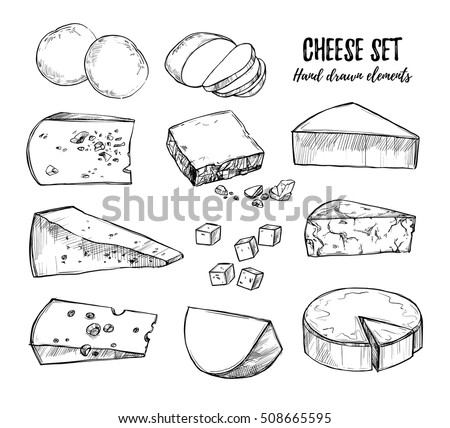 Hand drawn vector illustration. Types of cheese: mozzarella, gouda, parmesan, maasdam. Design elements in sketch style. Perfect for packaging, menu, cards, advertisement, banners