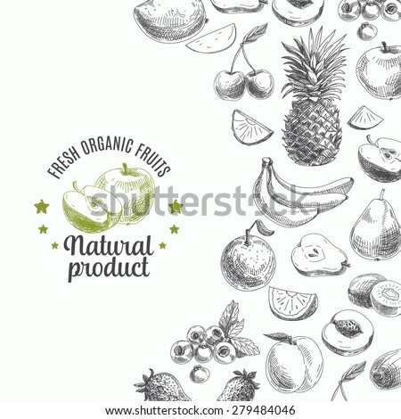 hand drawn vector illustration