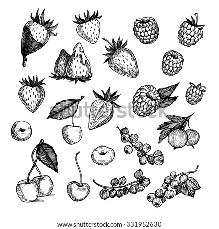 Hand drawn vector illustrations - Collection of berries (raspberries, strawberries, cherries, gooseberries).