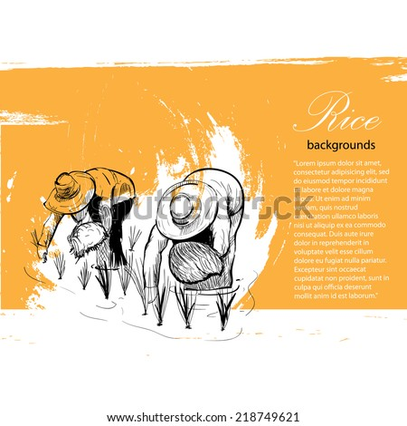 hand drawn vector of rice