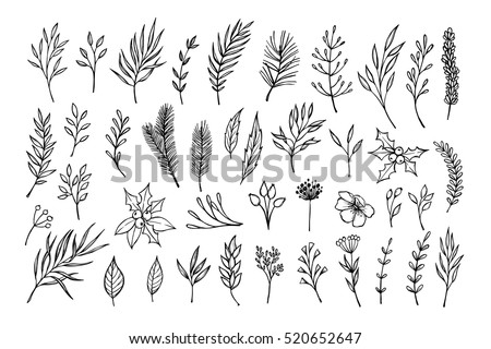 Hand drawn vector winter elements ( laurel, frame, leaf, poinsettia, holly, fir and pine branches, berry, flower). Christmas design elements. Perfect for invitations, greeting cards, posters, prints
