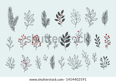 hand drawn vector winter floral