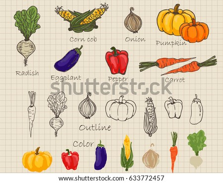 Hand drawn vegetable in retro style with mesh background #633772457