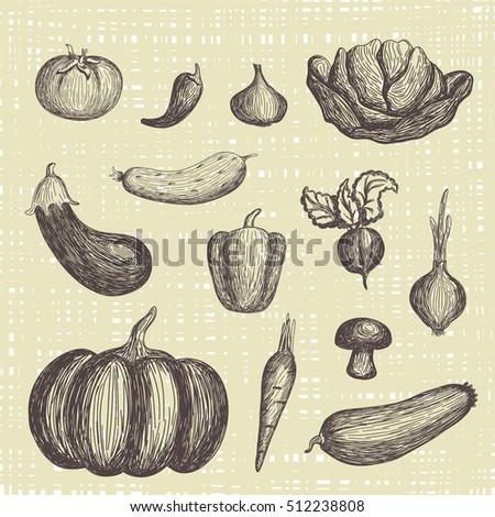 Hand drawn vegetables set #512238808