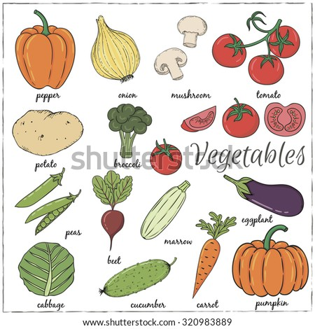 Hand drawn Vegetables with name. Vector illustration #320983889