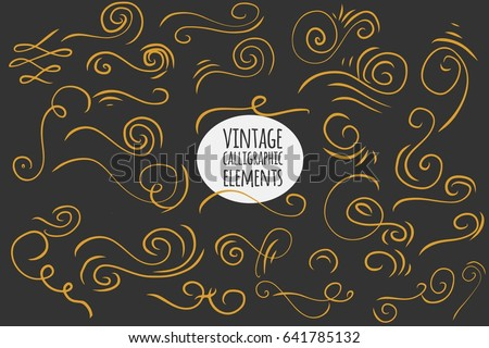 Hand drawn vintage calligraphic elements set. Floral set. Ornamental decorative elements. Vector flourish ornate elements design. Calligraphic kit.