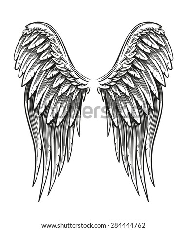 hand drawn vintage closed wings ...