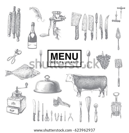 Hand drawn vintage sketch set of food and drinks for design of the menu. Kitchen tools, utensil and cooking. Vector illustrations, retro engraving style