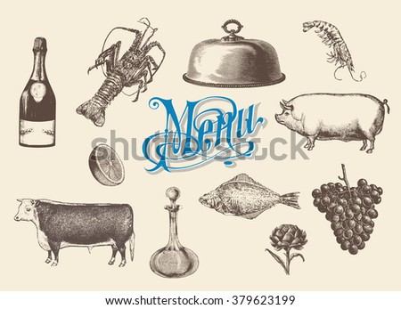Hand drawn vintage sketch set of food and drinks for design of the menu. Vector illustrations, engraving style