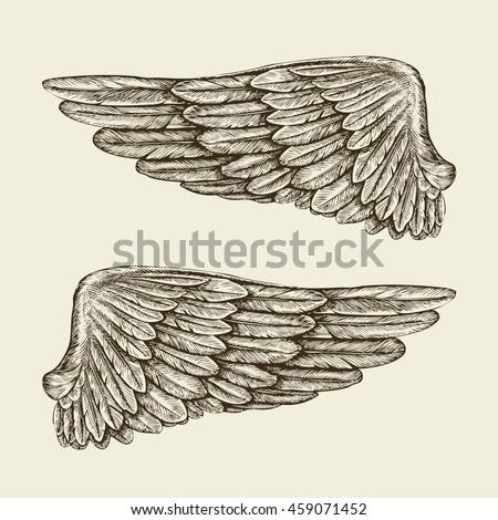 Hand drawn vintage wings. Sketch vector illustration