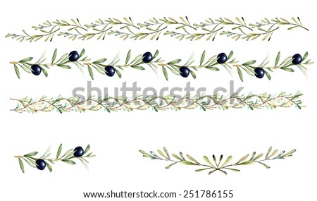 Hand drawn watercolor design elements - borders and decorations with olive fruits, branches, leaves and flowers.