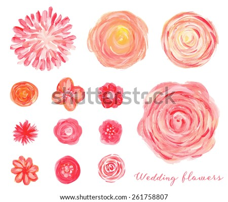Hand drawn wedding flowers set. Isolated vector roses, peonies, ranunculus.