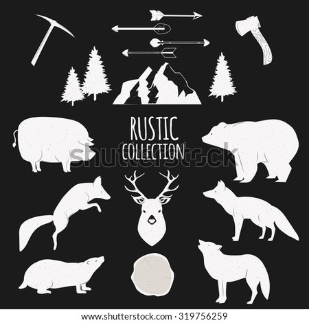 Hand Drawn wilderness animals and objects set