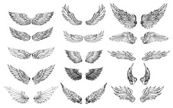 Hand drawn wing set.Sticker wing tattoo.Doodle and sketch style wing of bird tattoo.