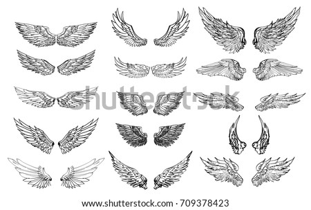hand drawn wing setsticker
