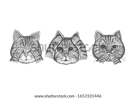 hand drawn 3 wise cats with