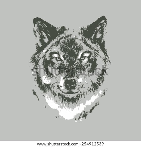 hand drawn wolf sketch on gray
