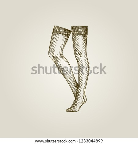 Hand Drawn Women's Stockings Sketch Symbol isolated on background. Vector Stockings In vintage Style. Woman's underwear hand drawing sketches elements