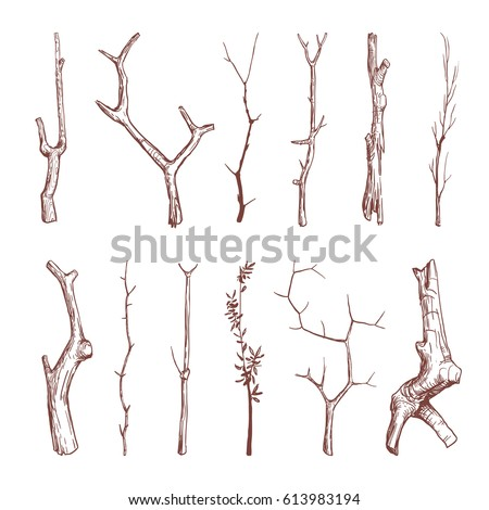 hand drawn wood twigs  wooden