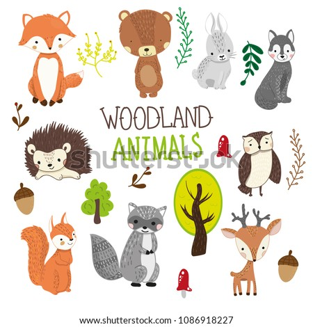 Hand drawn woodland animals clipart