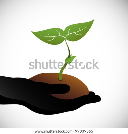 Hand holding a seedling. - stock vector