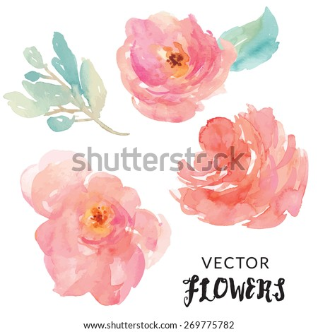Hand Painted Watercolor Flower Vector.
