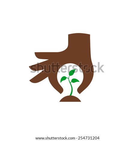 hand protecting plant   nature