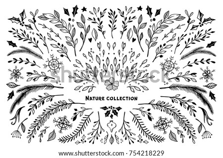 Hand Sketched Vector Winter Set Branches Leaves Flowers Swirls And Signs