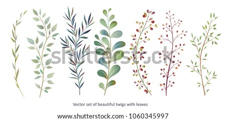 handdrawn vector watercolour