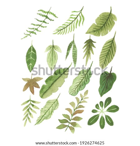Handmade Watercolor leaves Collections, Hand drawn leaves