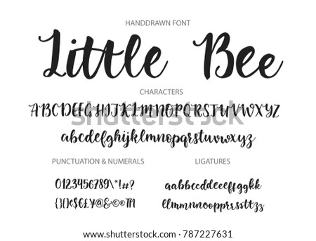 Handrawn Vector Alphabet Modern Calligraphic Font Brush Painted Abc With Ligatures