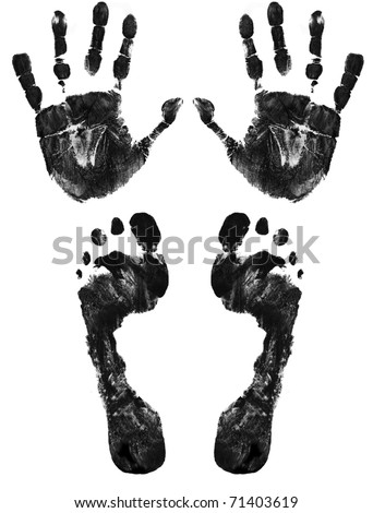 Hands and feet print isolated on white, vector illustration