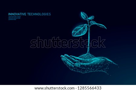 Hands holding plant sprout ecological abstract concept. 3D render seedling tree leaves. Save planet nature environment grow life eco polygon triangles low poly vector illustration