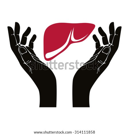 hands with human liver vector