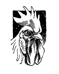 Handsome Rooster - Retro Clipart Illustration