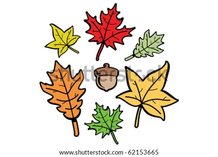 Handy little vector set of fall elements. Three different leaf types and an acorn. The color of each shape's outline/veins and fill color can be changed with one click.