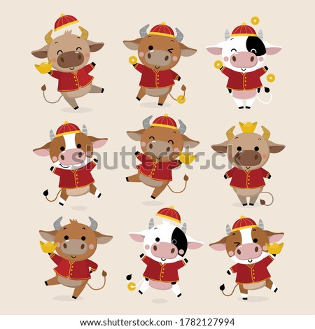 Happy Chinese new year greeting card. 2021 Ox zodiac. Cute cow in red costume and gold money. Animal holidays cartoon character. -Vector