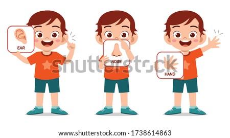happy cute kid boy body part anatomy Stock photo ©