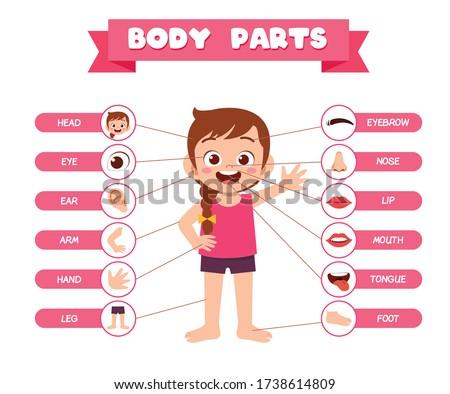 happy cute kid girl body part anatomy Foto stock ©