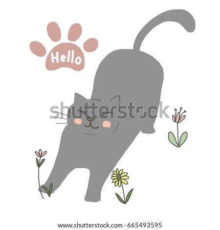 happy gray cat stretching its