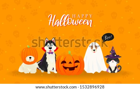 Happy Halloween Greeting Card Vector illustration. Cute cat and dogs in halloween pet costume