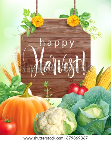 Happy Harvest background. Composition with vegetables and herbs. Vector illustration.