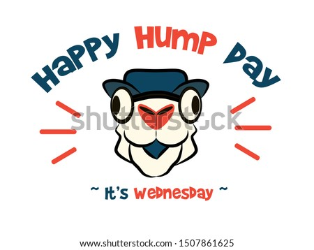 Happy hump day funny camel and letter vector image. Wednesday is the middle of the work, 'over the hump' towards the weekend week Foto stock ©