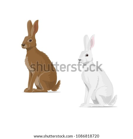 Hare or rabbit animal icon. Vector isolated zoology flat design of forest wild jackrabbit hare white and brown for wildlife fauna and nature zoo or open season hunting club or sport team badge