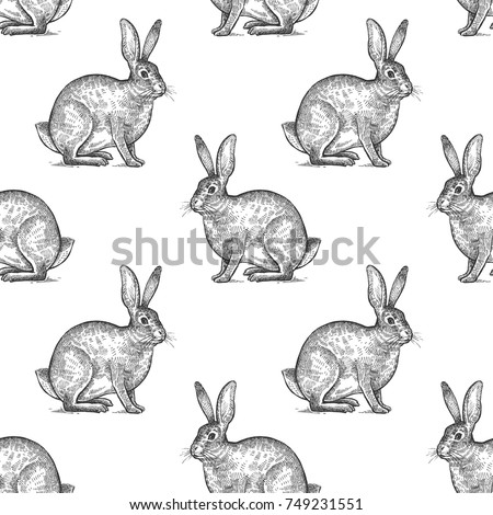 hare or rabbit seamless
