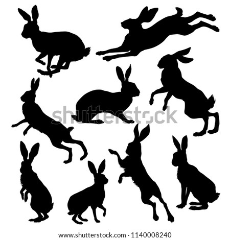Hare silhouette set. Vector illustration