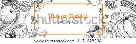 Harvest festival banner. Hand drawn vintage vector frame with vegetables, fruits, leaves. Farm Market poster. Vegetarian set of organic products. Detailed food drawing for menu, label,  flyer